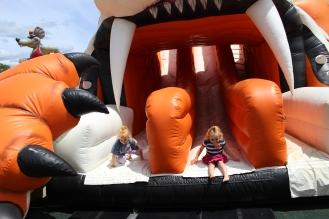 Giant Tiger Slide