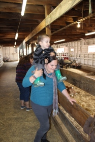 Liam is a bit wary of farm animals